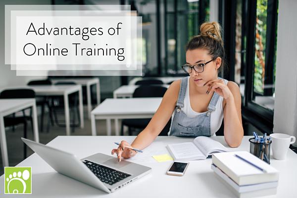 Advantages of Online Training