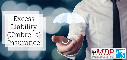 Excess Liability (Umbrella) Insurance