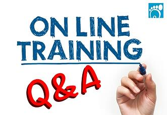 Online Training Q&A: What Users Need to Know