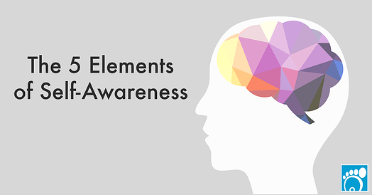 the five elements of self-awareness