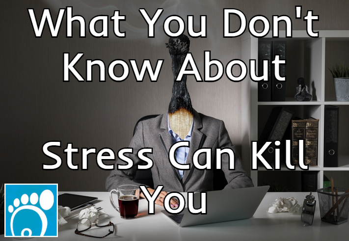 what you don't know about stress can kill you