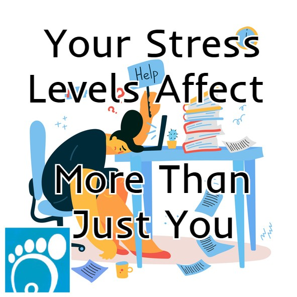 Your Stress Levels Affect More Than Just You