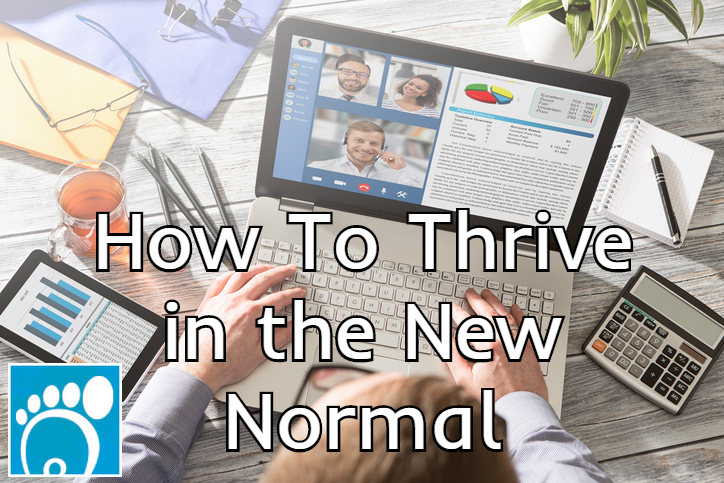 How To Thrive in the New Normal