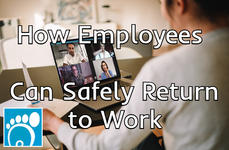 How employees can safely return to work